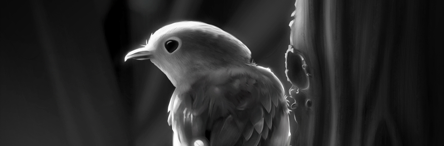Bird Value Study